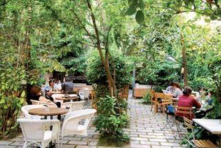 Limonlu Bahçe