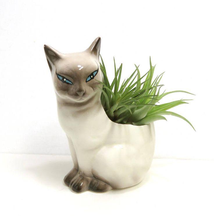Best 25 Pottery Animals Ideas On Pinterest Pottery