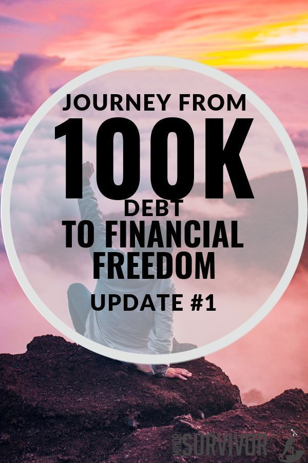 My Student Loan Payoff Plan Journey From 100k To Financial Freedom Update 1 Loan Payoff Paying Off Student Loans Student Loans Funny