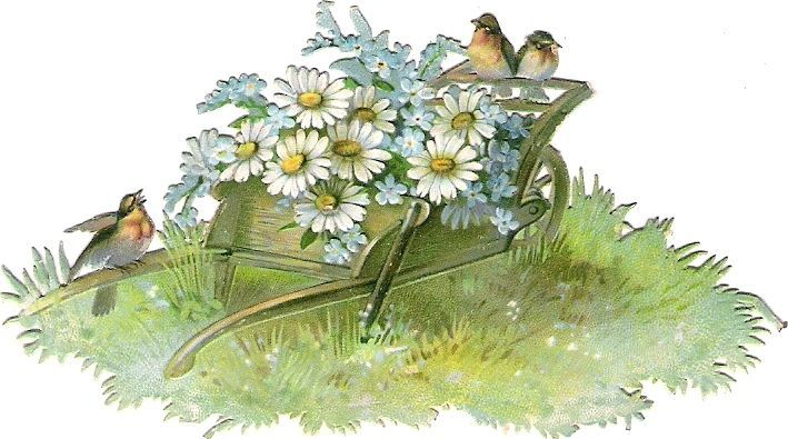 Oblaten Glanzbild scrap die cut  chromo  Vogel bird Karre wheelbarrow Margeriten