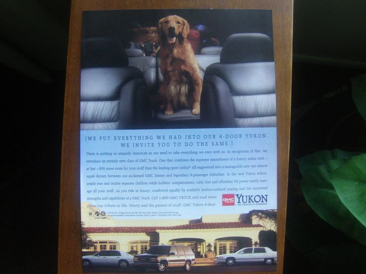1995 cute Golden Retriever photo GMC Yukon Truck vintage print Ad gifts for the auto enthusiast in your life vintage magazine print ads only $2.99 great for man cave!