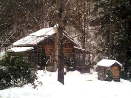 Trout Retreat Cabin - Boone, North Carolina Cabin Rental, Creekside Fishing
