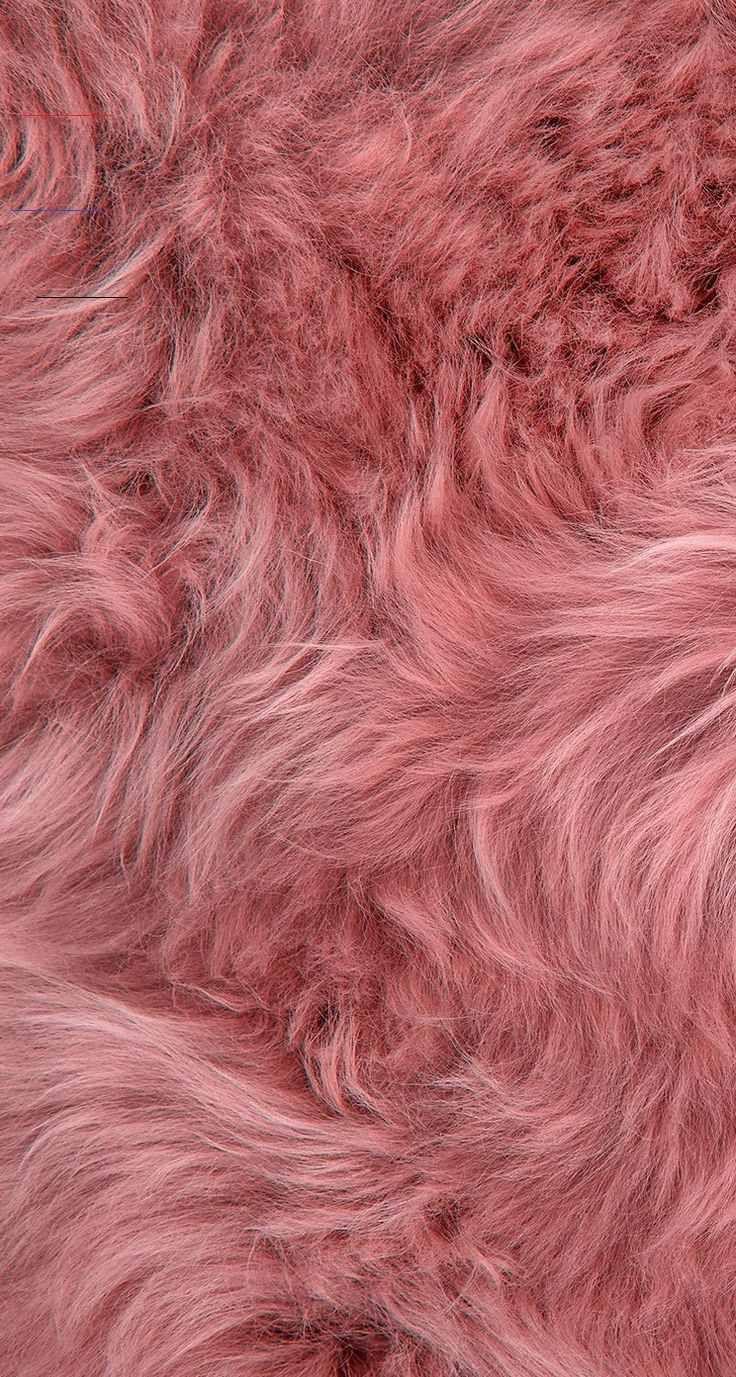 Pin By Shannon Vizenor On Wallpaper In 2020 Pink Wallpaper