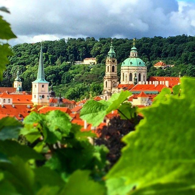 Lesser town (towers of St.Nicolas and St.Thomas church) and Petřín from St.Wenceslas Vineyard in Prague, Czechia #praha #prague #Czechia