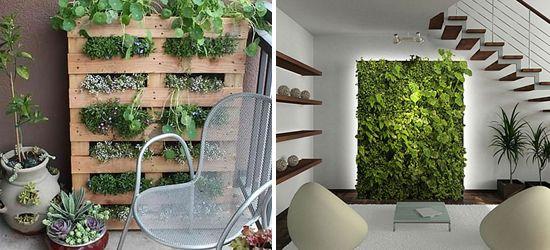 Van raamtuin tot eetbare wand: vijfmaal groen zonder tuin - De Standaard: http://www.standaard.be/cnt/dmf20150225_01548370