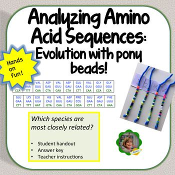 Best 25+ Amino acid sequence ideas on Pinterest Mrna sequence - amino acid chart