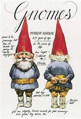 Sneaky little guys, gnomes. <3 them!