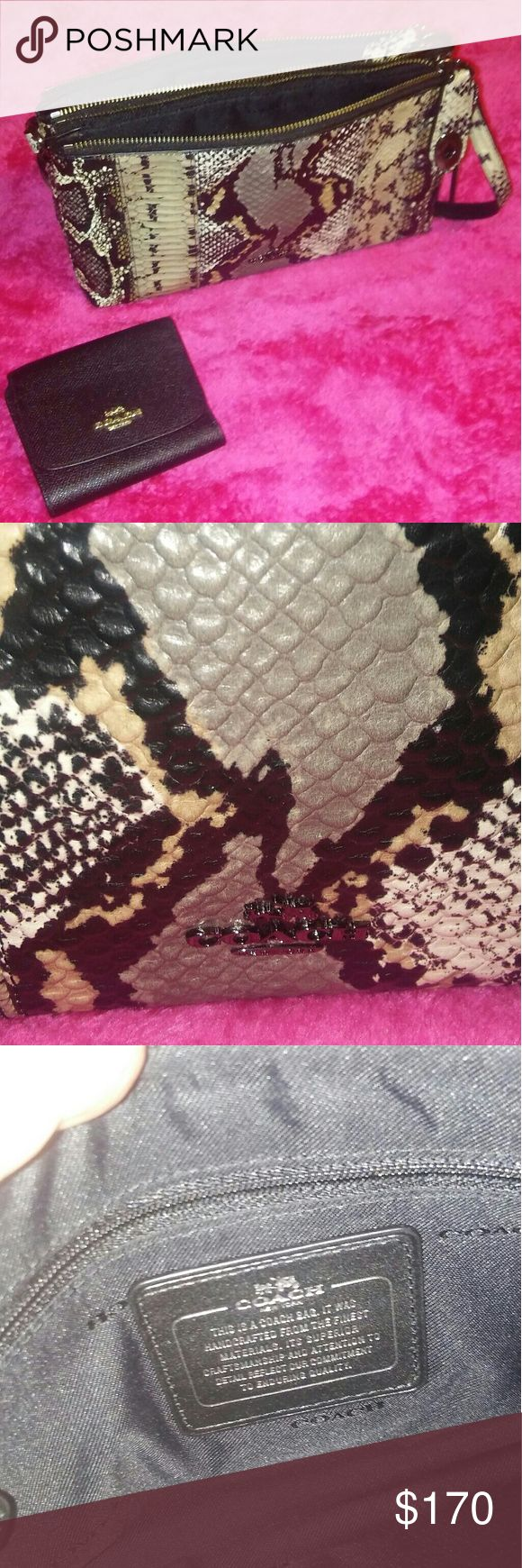 NWOT Coach Snakeskin bag and wallet bundle Limited Edition Snakeskin bag never used and small black Coach wallet very beautiful bag. Bags Crossbody Bags