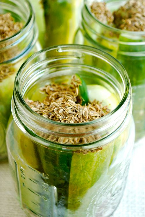 September 13th, 2014 - Snack A Pickle Day! » Homemade Dill Pickles » asweetpeachef.com