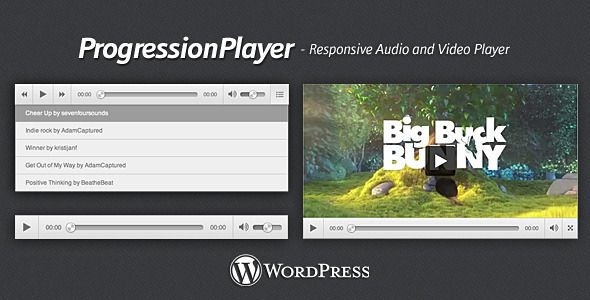 Add Audio and Video Files onto your Website