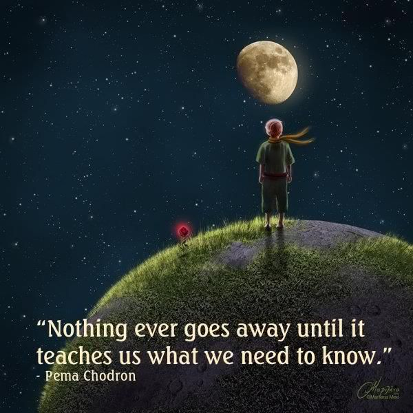 """Nothing ever goes away it teaches us what we need to know."" ~Pema Chödrön"