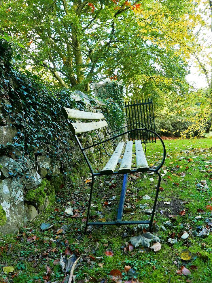 Lonely bench at Rowallane - October 2016