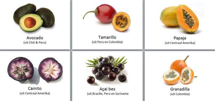 My continent box: South America fruit cards: Avocado, Tamarilla, Papaja, Cainito, Acai bes, Cranadilla