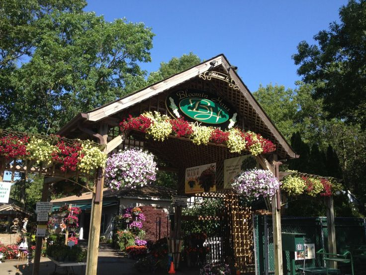 These Long Island Nurseries Have Everything From Healthy Shrubs And Pretty  Perennials To Gardening Supplies And Backyard Decor.