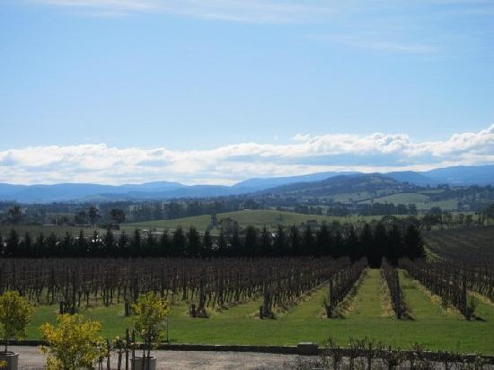 Evergreen Winery Tours