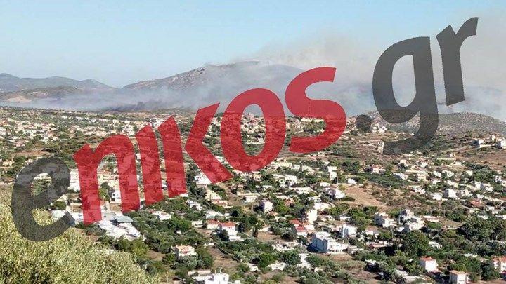 Μια ανάσα από τα σπίτια η φωτιά στα Καλύβια - ΦΩΤΟ αναγνώστη