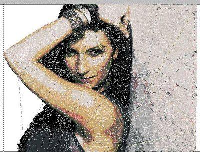 Elena Ricami: Laura Pausini : Digitalizzazione con Pe Design Bro...