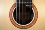 The Classical Guitar Store ...since 1967 - Armin Hanika