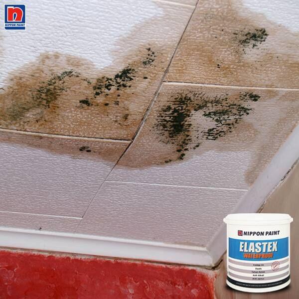 Sumber bocor dan rembes air yang paling banyak adalah bagian atap. Untuk melindungi atap dari masalah bocor, Sahabat Nippon Paint bisa menggunakan cat Elastex Waterproof. Cat pelapis anti bocor dengan bahan dasar latex elastomerik akrilik yang sangat baik untuk mencegah kebocoran air. Yuk, simak kelebihan lainnya di http://bit.ly/Elastex-Waterproof  #ImajinasiTanpaKompromi