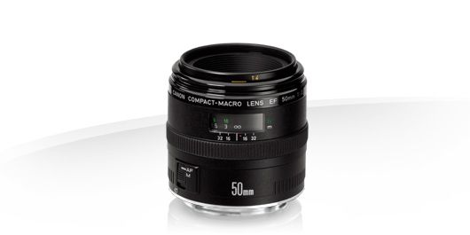 EF 50mm f2.5 Compact Macro