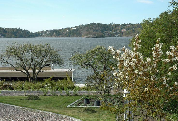 Lidingö garden, seaside, coast, flower beds, sea, sea view, small trees,