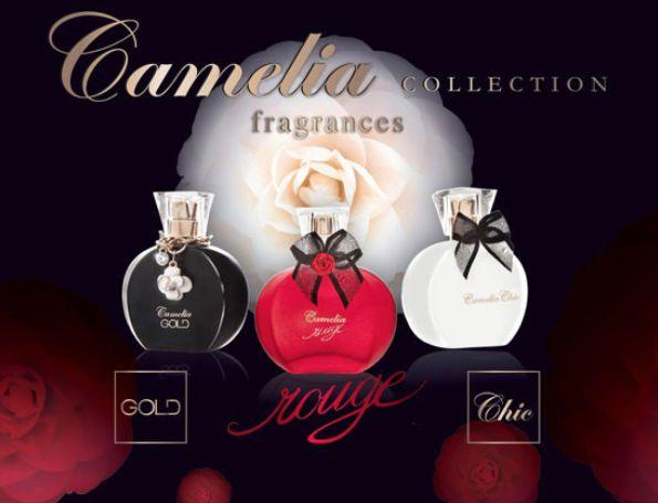Cofanetto #Regalo Camelia Collection  Info ilgiardinodischia@hotmail.it