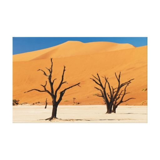 DEAD vlei with DEAD of trees in Namib desert