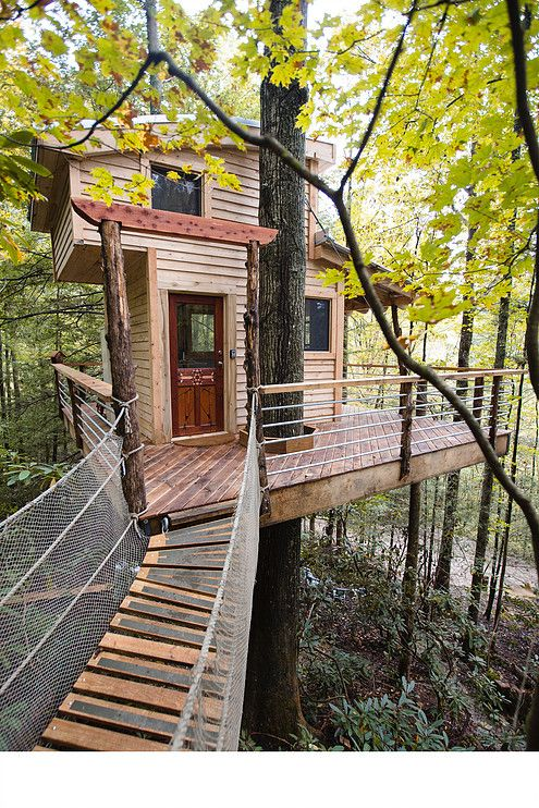 red river gorge the sylvan float tree house rental the canopy crew