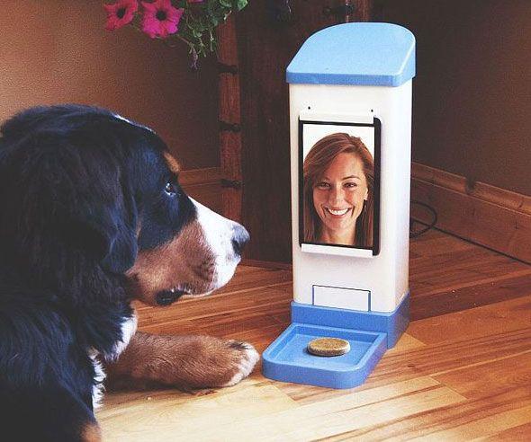 Dog Treat Wireless Toy