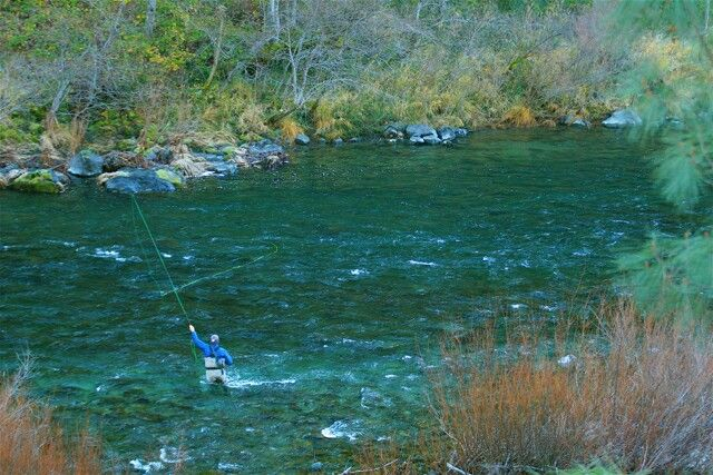 29 best trinity river california images on pinterest for Trout fishing northern california