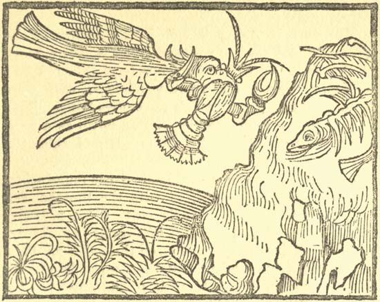 Illustration of a Panchatantra fable, about a bird who is outwitted by a crab; from an 1888 edition published as The Earliest English Version of the Fables of Bidpai, 'The Moral Philosophy of Doni' translated (1570) from the Italian of Anton Francesco Doni by Sir Thomas North.