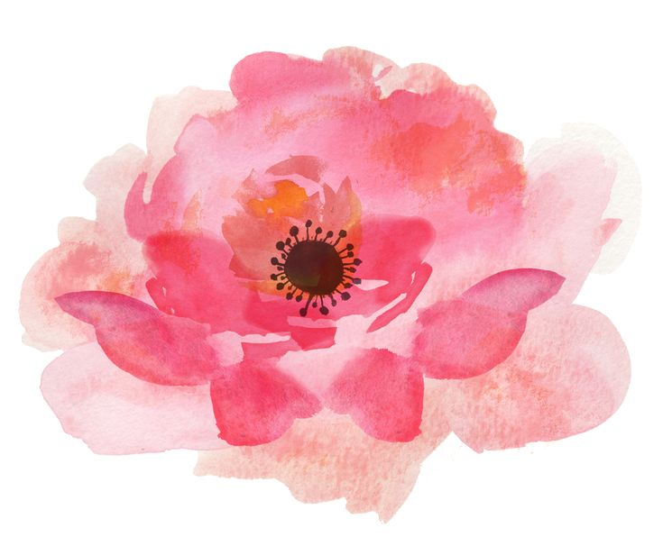 FPTFY_Free-Watercolor-Flowers_THJ_2.png (1848×1548)