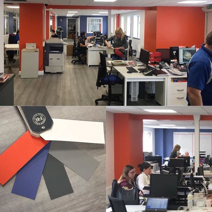 Celuplast are happy with the colours I chose for their new open space office @celuplast #celuplast #happyclients #colourconsultant #workspace #noiinteam #busybees @farrowandball #shutterco #newhampshireinteriors #recent #baldoyle