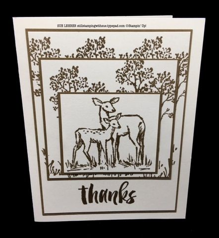 Handmade thank you card using In the Meadow and Suite Sayings Stamp Sets in the 2016 Stampin' Up! Occasions catalog. #SIPChallenge27