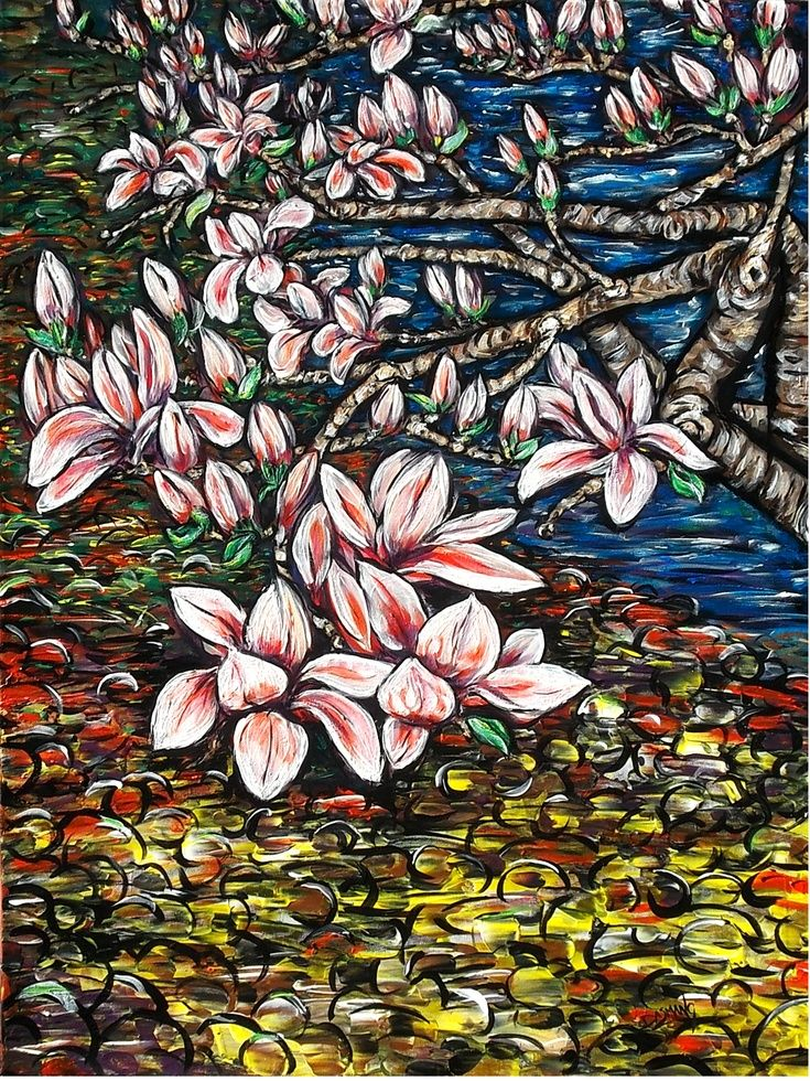 ARTFINDER: Magnolia  by DASMANG    (Gary Aitken ) - Magnolia in bloom