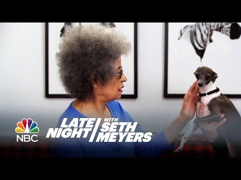 Seth Meyers Had A Bunch Of Dog Psychics Come On His Show To Talk To His Dog Frisbee And It's Amazing