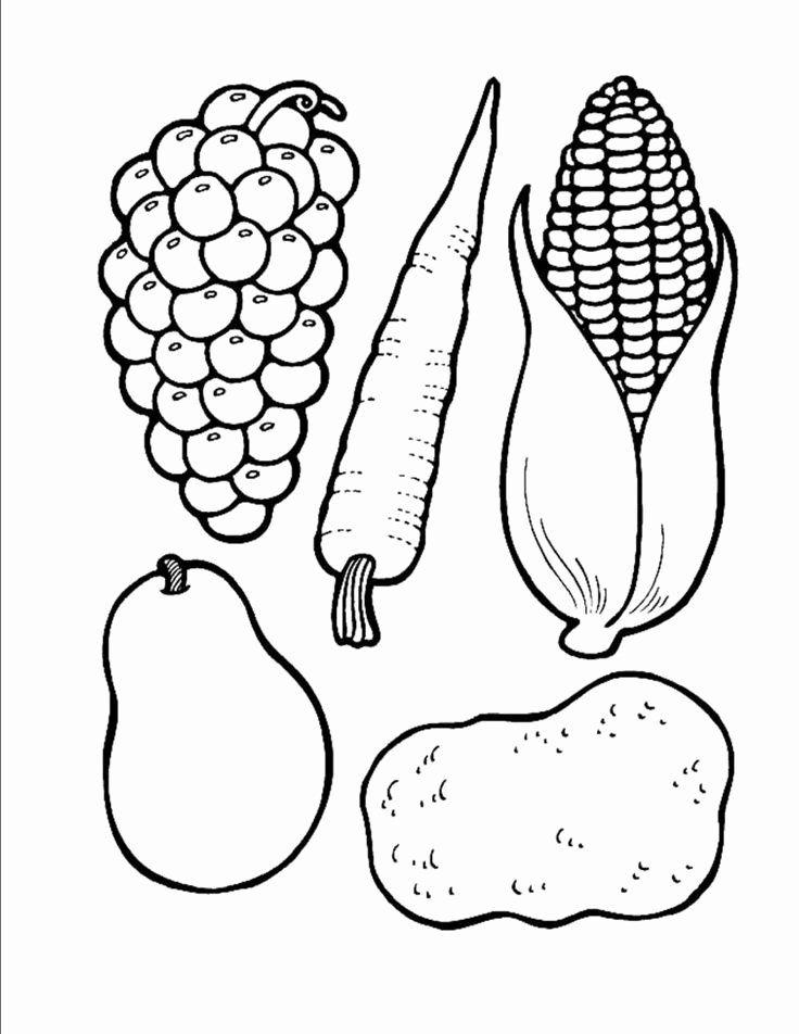Coloring Vegetables For Kindergarten In 2020 Cornucopia Craft