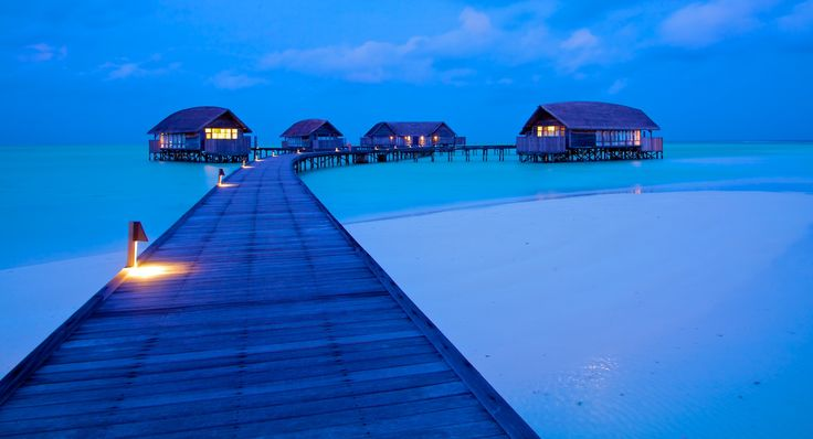 I could stay here for a month with my girlfriend, some books and a surfboard! Greetings, Haroun  Cocoa Island Resort, Maldives #luxurious #ocean #holiday www.goachi.com