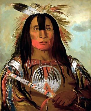 If you were to type American Indian into google, these are a few of the pictures that would come up. The first one I have captioned Indian Warrior, and the second one I have captioned Stoic …