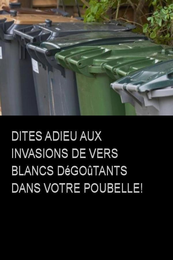 Nematodes Anti Vers Blancs Hannetons Et Otiorhynques Lutte Bio
