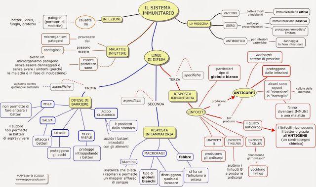 MAPPE per la SCUOLA: IL SISTEMA IMMUNITARIO
