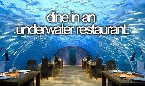 Dine in an Underwater Restaurant / Bucket List Ideas / Before I Die / [7 Most Incredible Underwater Restaurants and Hotels - http://entertainmentdesigner.com/news/restaurant-design-news/7-most-incredible-underwater-restaurants-and-hotels/]