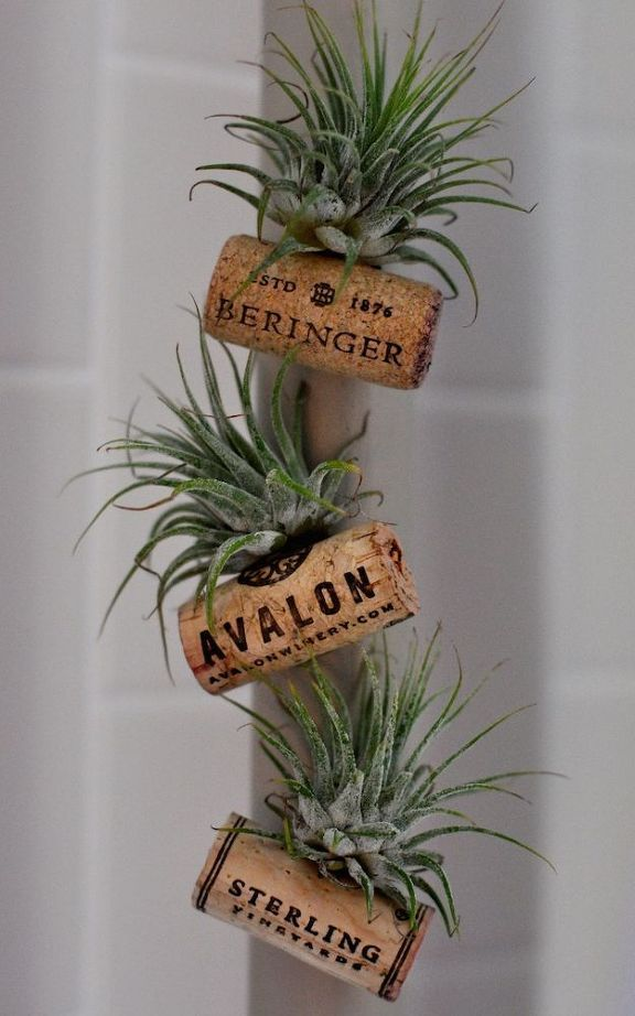 Wine cork plant magnets