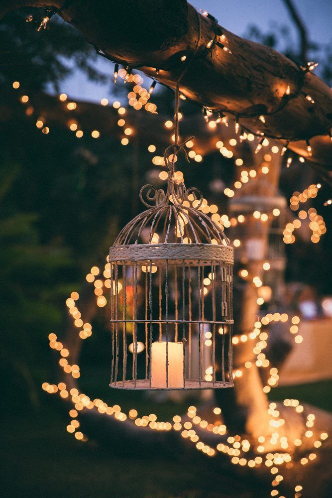 Terrific Photographs Winter Garden Aesthetic Concepts One Of The Most Common Questions About Winter Gard In 2021 Fairy Lights Garden Beautiful Wallpapers Lit Wallpaper