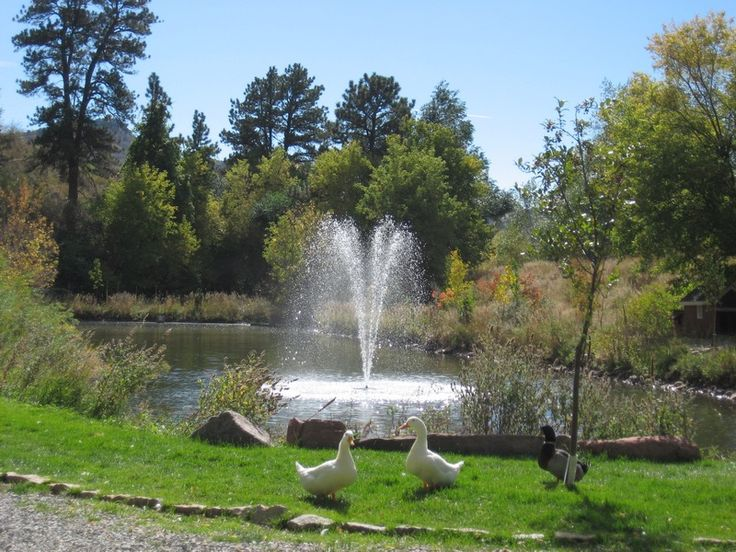 25 Best Ideas About Pond Fountains On Pinterest Pond