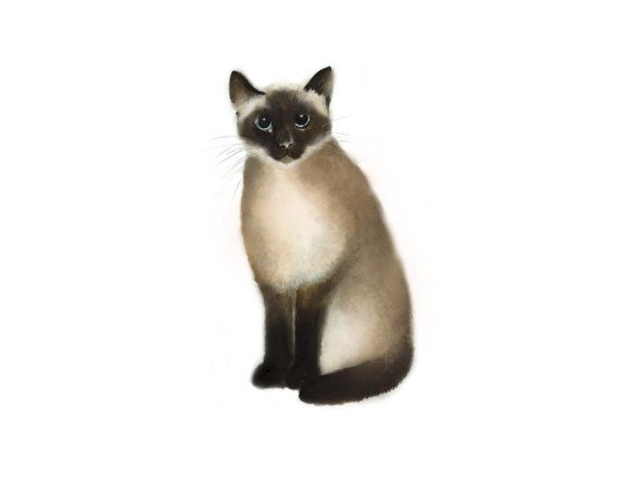 Cat Wall Decor 158 best studio q - art for the nursery images on pinterest