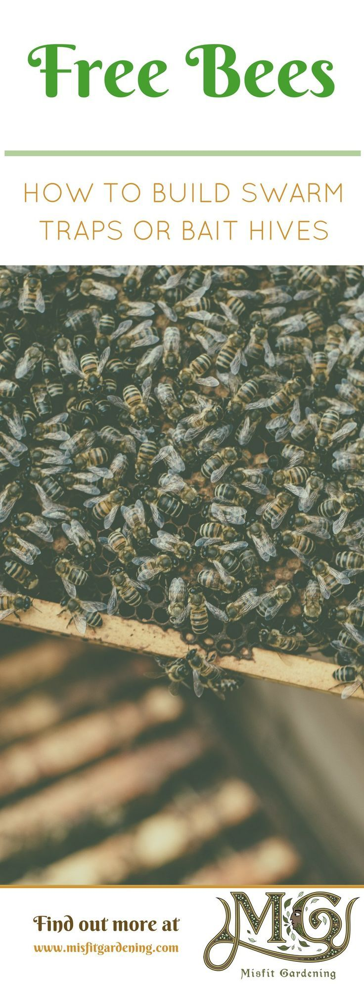 Start #beekeeping this spring with free bees by building a swarm trap. Click to find out how to build a swarm trap or bait hive or pin it and save for later