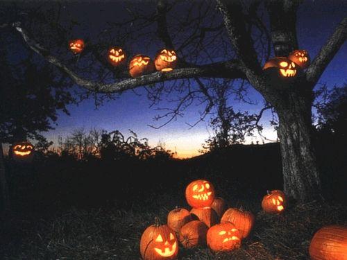 Glowing Jack O Lanterns