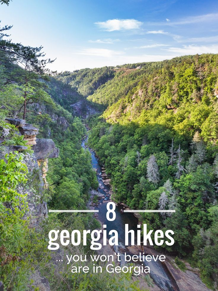 8 great Georgia hikes to incredible place- trying out a few southern hikes in a week or so. I'm excited to try some of these out!