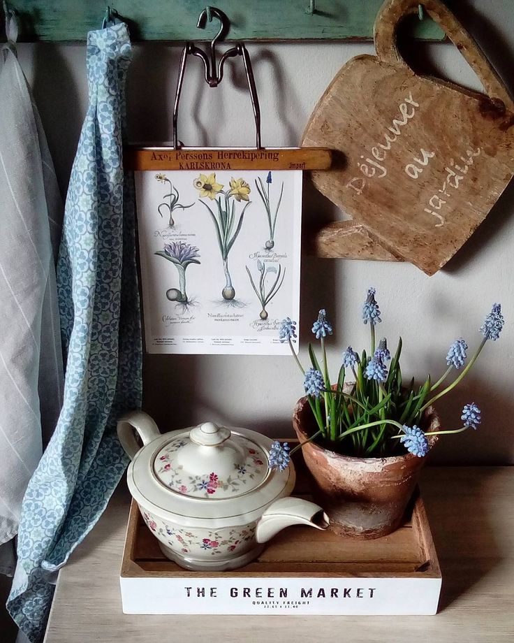 ....blue spring for you 🌿 🌾💙...  #muscari #countryhome #kitchenstuff #kitchenview#stilllife #vintagekitchen#blue#still_life_gallery #botanicals#kitchendesign #kitchenlife #flowersspring #flowers #szafirki #idziewiosna #starocie #kuchnia #kuchennerzeczy#niebieski